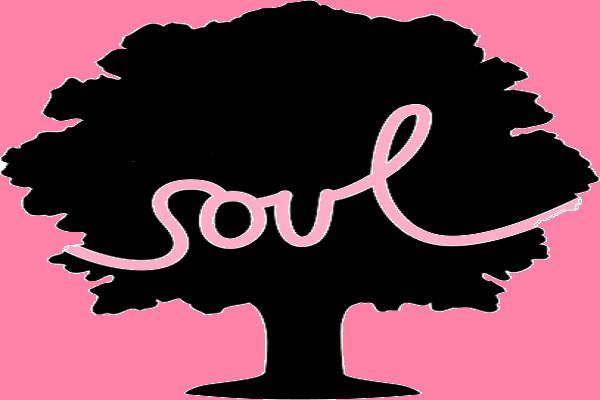 Soulsession, seele, achtsamkeit, meditation, entspannung, innere heilung, selbstheilungskräfte